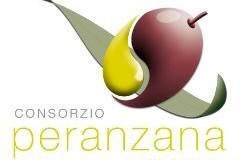 Consorzio Peranzana Alta Daunia:previsioni negative per la campagna olivicola 2014/2015