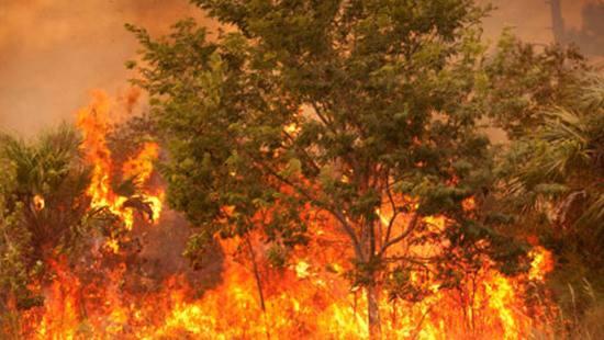 Prevenzione Incendi Primavera/Estate 2015: ecco l'ordinanza