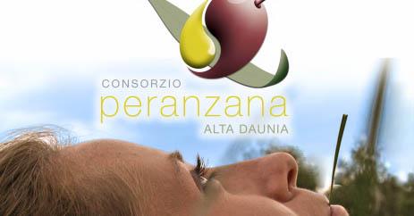Eletti i nuovi membri del cda del Consorzio Peranzana Alta Daunia, riconfermata la Presidenza a Severino Carlucci
