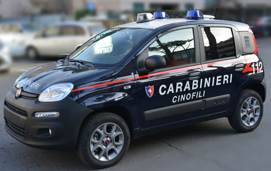 Controlli antidroga a Torremaggiore da parte del Nucleo Cinofili dei Carabinieri : un arresto ed una denuncia