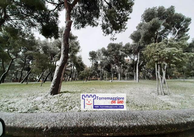 13 febbraio 2021: prima neve a Torremaggiore, ecco le prime foto