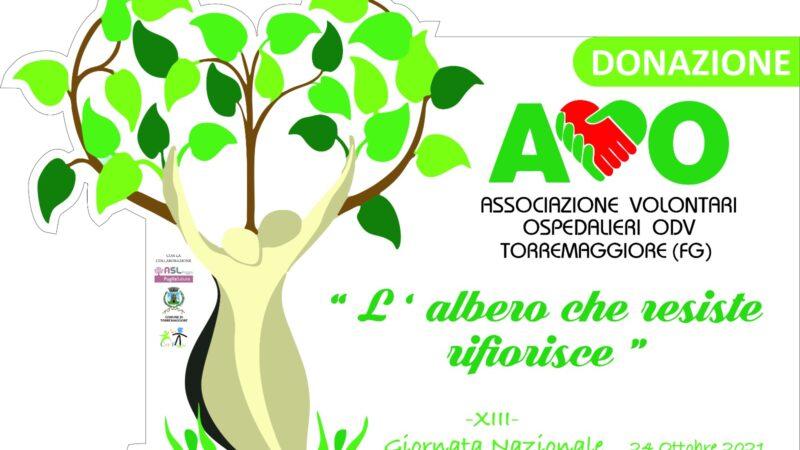 L'albero che resiste rifiorisce: evento dell'AVO il 21 ottobre 2021 al PTA Prof Bellantuono a Torremaggiore con la piantumazione di un cedro libanese